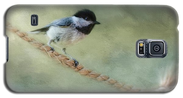 Chickadee At The Shore Galaxy S5 Case by Jai Johnson