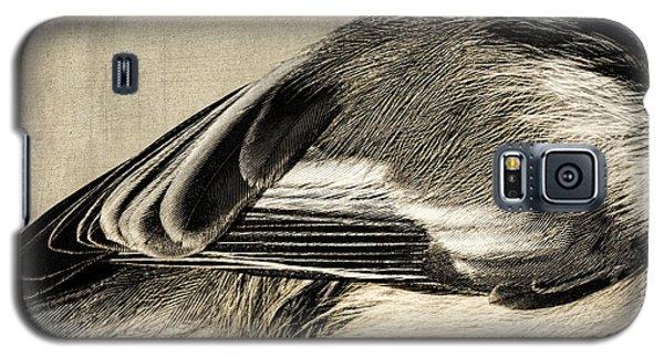 Chickadee Feathers Galaxy S5 Case