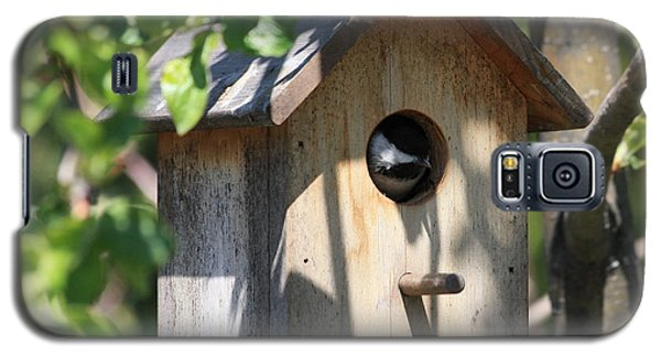 Chickadee In Birdhouse Galaxy S5 Case by Marjorie Imbeau