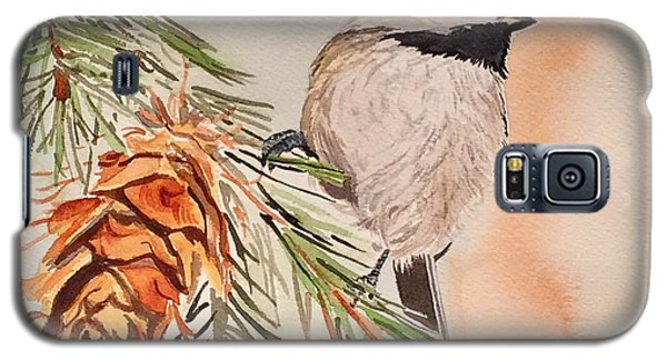 Chickadee In The Pine Galaxy S5 Case