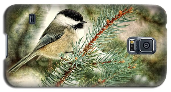 Chickadee On A Snowy Tree Galaxy S5 Case