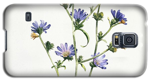 Chicory Galaxy S5 Case