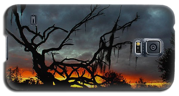 Chilling Sunset Galaxy S5 Case