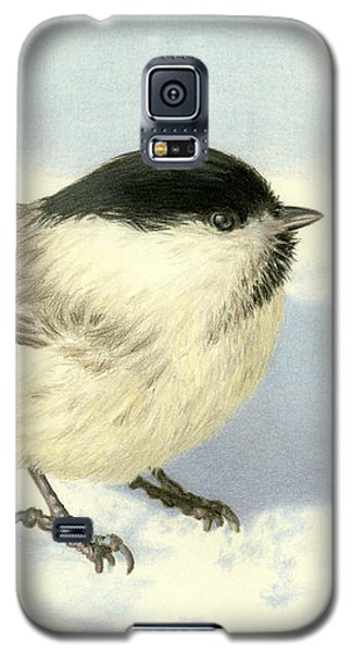 Chilly Chickadee Galaxy S5 Case by Sarah Batalka