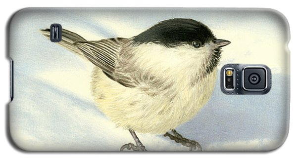 Audubon Galaxy S5 Case - Chilly Chickadee by Sarah Batalka