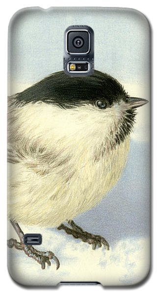 Chilly Chickadee Galaxy S5 Case