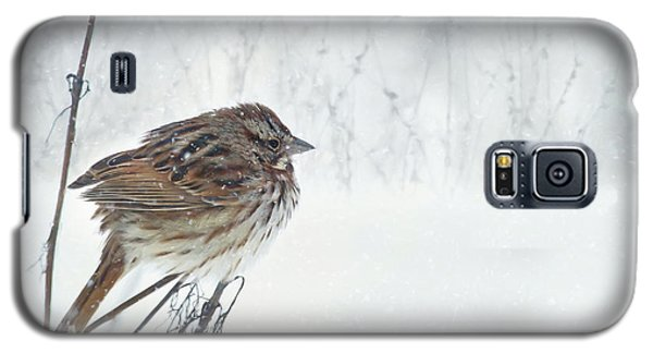 Galaxy S5 Case featuring the mixed media Chilly Song Sparrow by Lori Deiter
