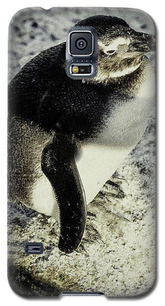 Chillypenguin Galaxy S5 Case