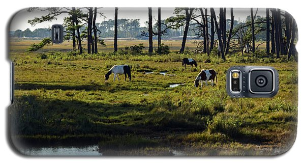 Chincoteague Ponies Galaxy S5 Case