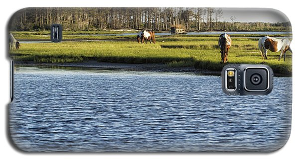 Chincoteague Ponies On Assateague Island Galaxy S5 Case