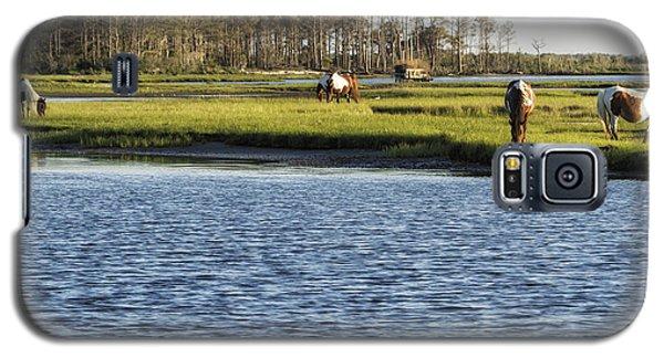 Chincoteague Ponies On Assateague Island Galaxy S5 Case