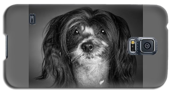 Chinese Crested - 02 Galaxy S5 Case by Larry Carr