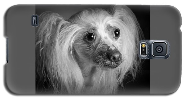 Chinese Crested - 04 Galaxy S5 Case by Larry Carr