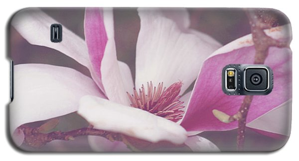 Chinese Magnolia Bloom Galaxy S5 Case by Toni Hopper