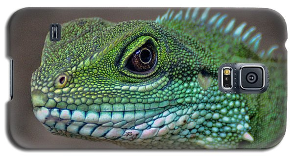Galaxy S5 Case featuring the photograph Chinese Water Dragon by Savannah Gibbs