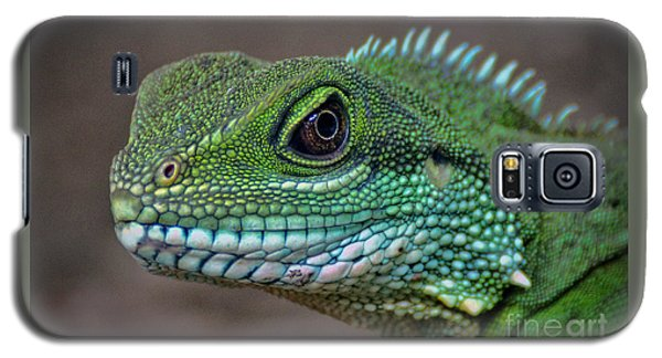 Chinese Water Dragon Galaxy S5 Case