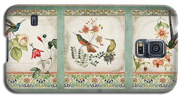 Triptych - Chinoiserie Vintage Hummingbirds N Flowers Galaxy S5 Case