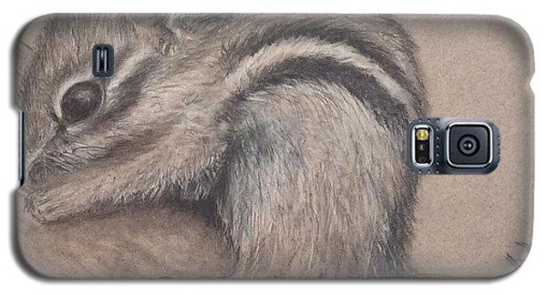 Chipmunk, Tn Wildlife Series Galaxy S5 Case by Annamarie Sidella-Felts