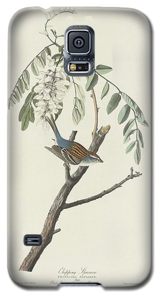 Chipping Sparrow Galaxy S5 Case by Rob Dreyer