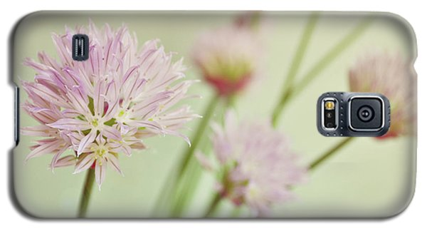 Galaxy S5 Case featuring the photograph Chives In Flower by Lyn Randle