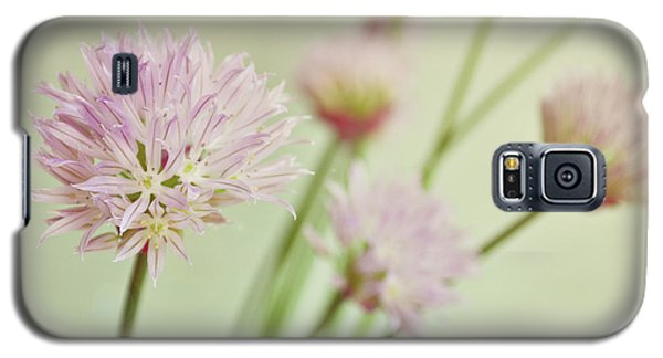 Chives In Flower Galaxy S5 Case by Lyn Randle