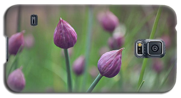 Galaxy S5 Case featuring the photograph Chives by Lyn Randle