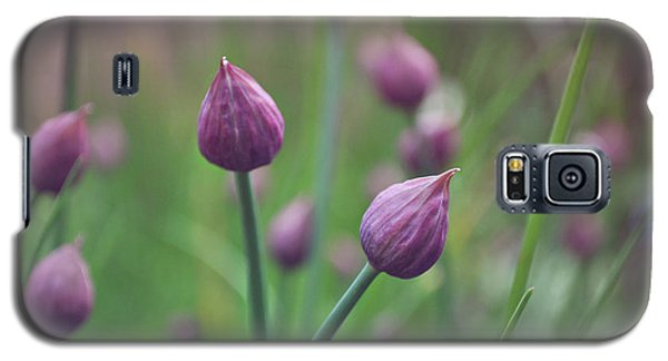 Chives Galaxy S5 Case by Lyn Randle