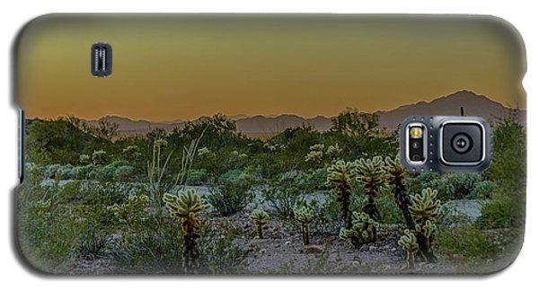 Cholla Desert Sunset Galaxy S5 Case