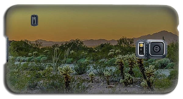 Cholla Desert Sunset Galaxy S5 Case