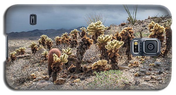 Cholla Family With Guests Galaxy S5 Case