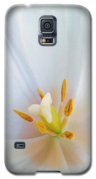 Galaxy S5 Case featuring the photograph Christened Tulip by Gwyn Newcombe