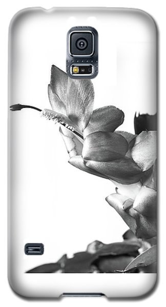 Christmas Cactus Galaxy S5 Case by Ed Cilley