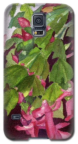 Galaxy S5 Case featuring the painting Christmas Cactus by Lynne Reichhart