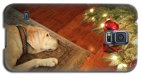 Christmas Dreams Galaxy S5 Case