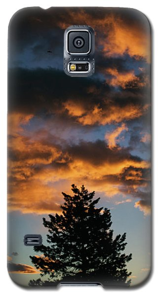 Christmas Eve Sunrise 2016 Galaxy S5 Case