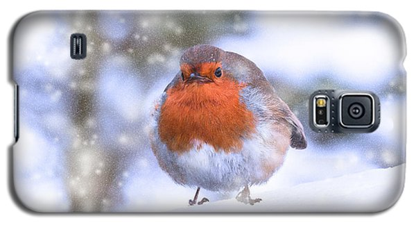 Galaxy S5 Case featuring the photograph Christmas Robin by Scott Carruthers