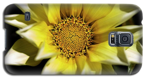 Galaxy S5 Case featuring the photograph Chrysanthos by Linda Lees