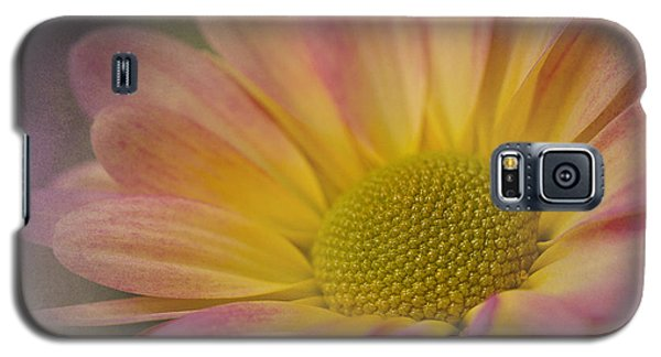 Chrysanthemum 3 Galaxy S5 Case
