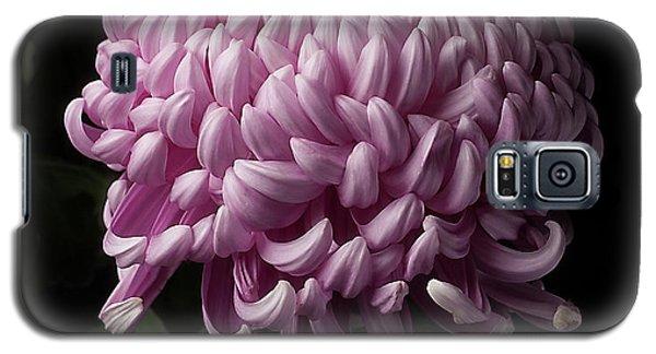 Chrysanthemum  Galaxy S5 Case