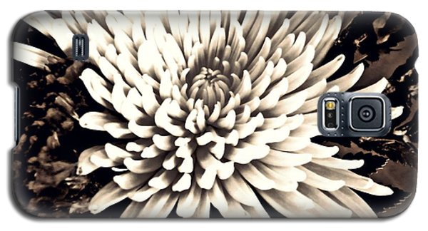 Galaxy S5 Case featuring the photograph Chrysanthemum In Sepia 2  by Sarah Loft