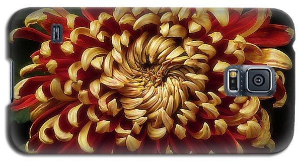 Chrysanthemum 'st Tropez' Galaxy S5 Case