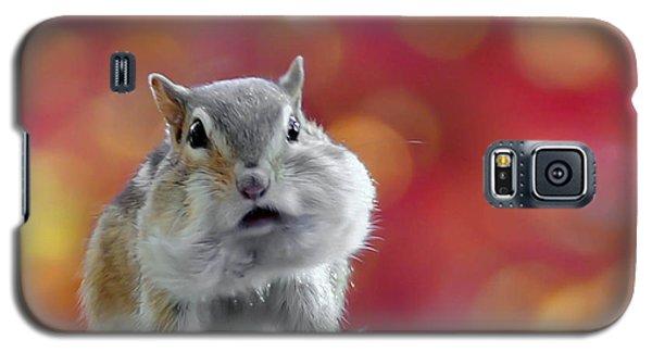 Chubby Cheeks Galaxy S5 Case