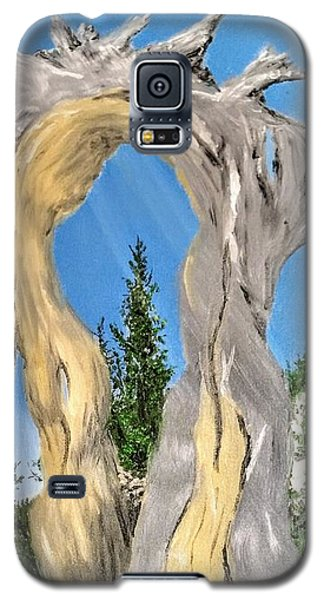 Church Window Galaxy S5 Case