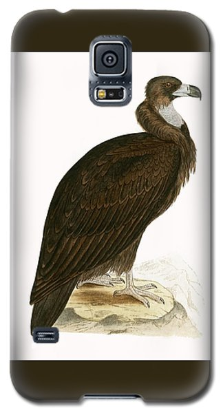 Cinereous Vulture Galaxy S5 Case