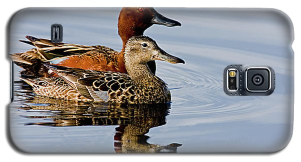 Cinnamon Teal Pair Galaxy S5 Case