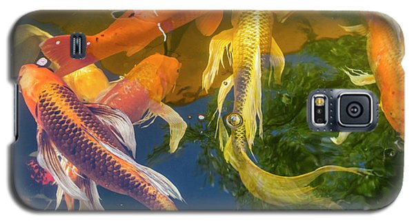Circle Of Koi Galaxy S5 Case