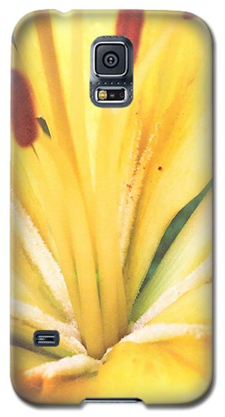 Citrine Blossom Galaxy S5 Case