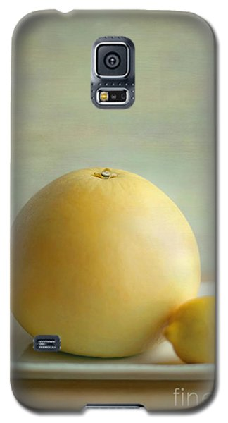 Galaxy S5 Case featuring the photograph Citrus Brothers by Aiolos Greek Collections
