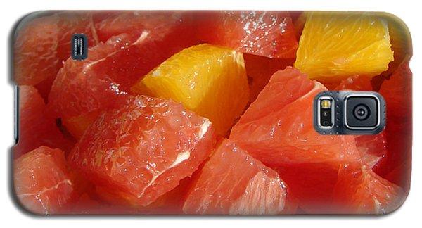 Citrus In Winter Galaxy S5 Case