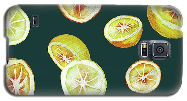 Citrus Galaxy S5 Case by Varpu Kronholm